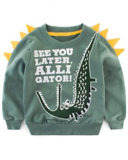 Custom Cartoon Printed Boys Long Sleeve Sweatshirt